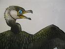 たまごの工房 企画展 「 トリ・とり・鳥 展 」 その2_e0134502_1739126.jpg