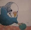 たまごの工房 企画展 「 トリ・とり・鳥 展 」 その2_e0134502_17445830.jpg
