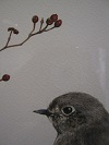 たまごの工房 企画展 「 トリ・とり・鳥 展 」 その2_e0134502_1765764.jpg