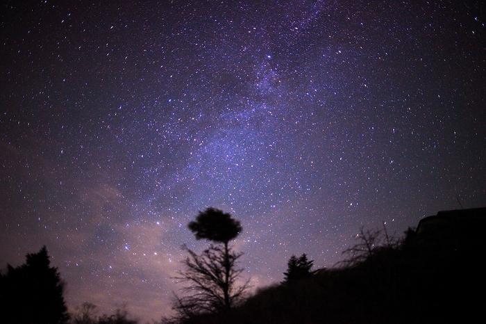 星降る夜に @剣山_c0247313_8444123.jpg