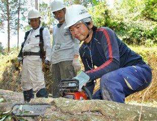 佐川町の「自伐型林業」_a0051539_20122295.jpg