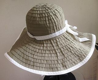 つばの広い帽子_a0159045_16191401.jpg