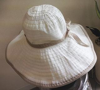 つばの広い帽子_a0159045_16191483.jpg