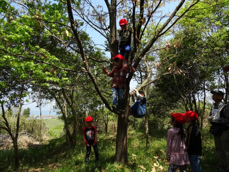 多奈川小学校1・2年生遠足のお礼のお便りが届きました     by     (TATE-misaki)_c0108460_11340400.jpg