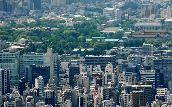 東京スカイツリーからの展望_b0093088_713212.jpg