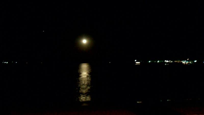 月明かり 海岸_d0092901_2312030.jpg