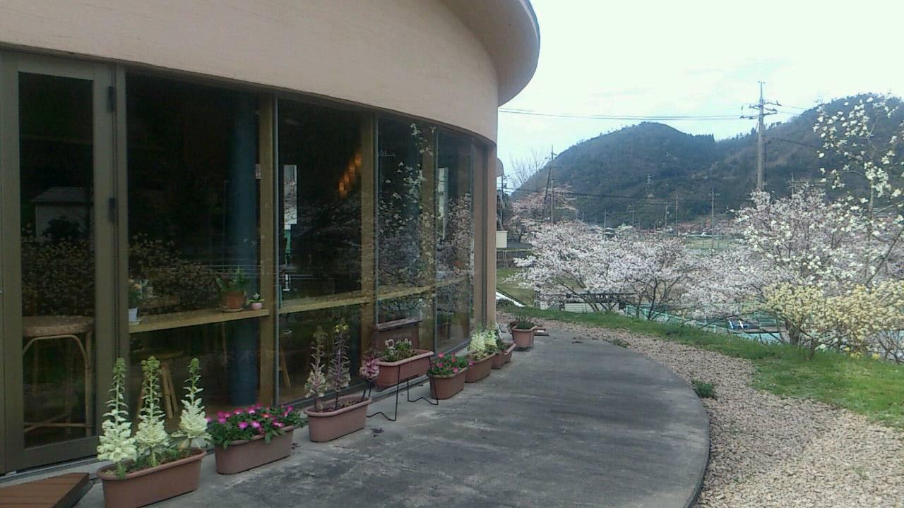 Cafe  Berry  @青谷 でランチ_e0115904_3384997.jpg