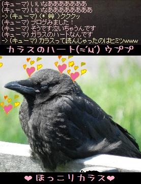 f0072010_2122555.jpg