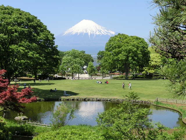 風がさわやか! 30年が経過し、風格が備わった富士中央公園_f0141310_738573.jpg