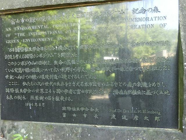 風がさわやか! 30年が経過し、風格が備わった富士中央公園_f0141310_7423775.jpg