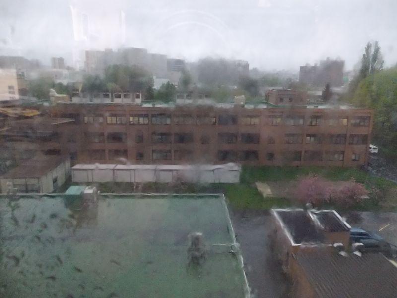 一日中、雨_c0025115_18574823.jpg