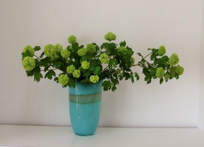 蘭のガラス花器 ミント_c0165824_22294044.jpg