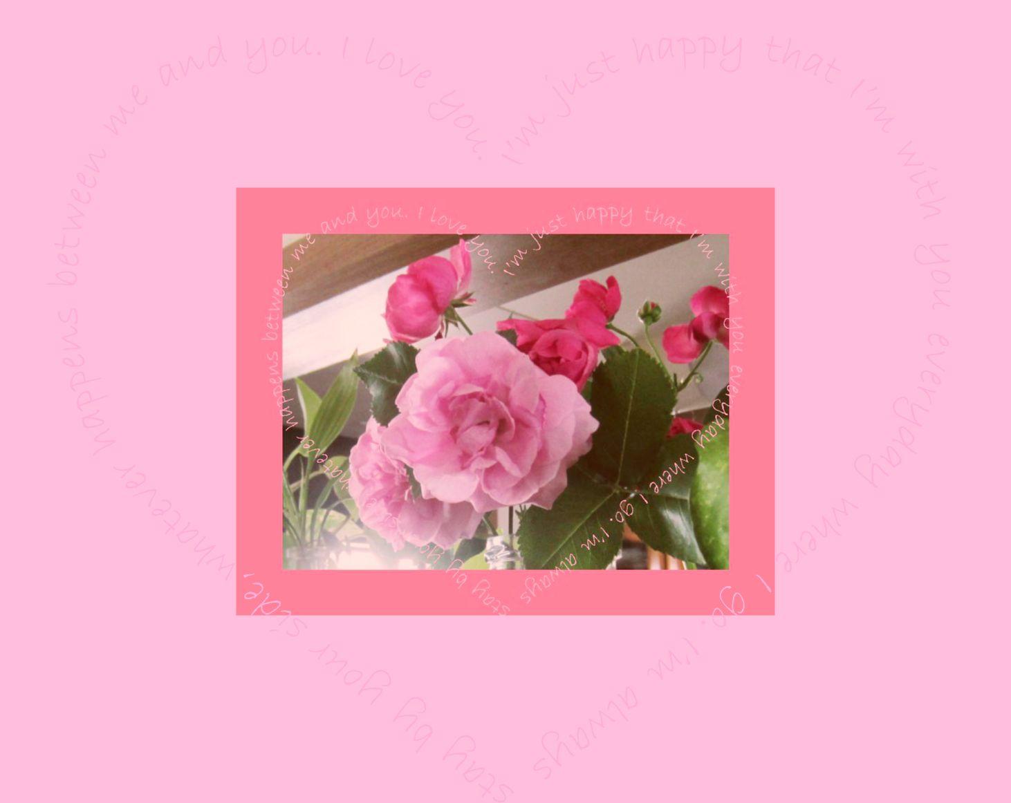 b0139860_1641843.jpg