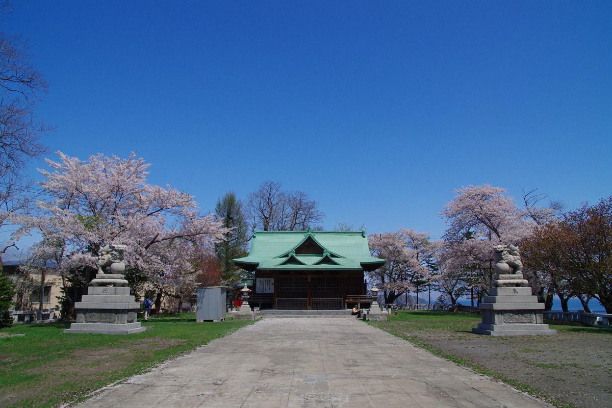 小樽桜めぐり 2014 #6_b0103798_4393324.jpg
