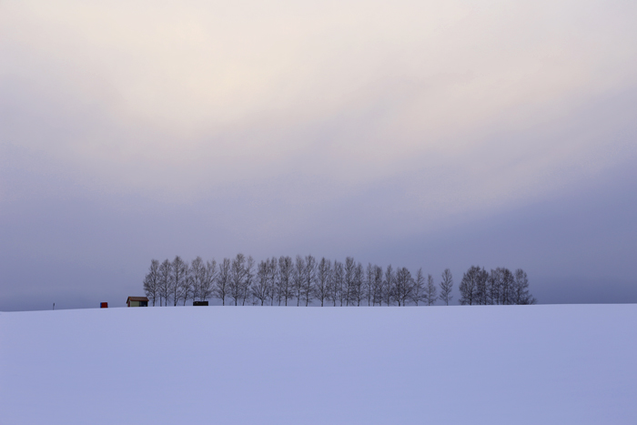 北の住まい設計社カフェ と 美瑛の風景_f0179404_9103343.jpg