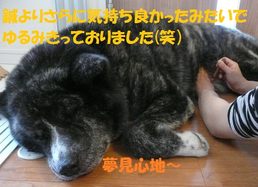 f0121712_11481218.jpg