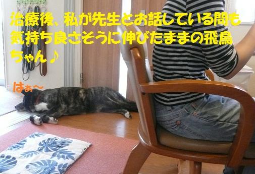 f0121712_125464.jpg