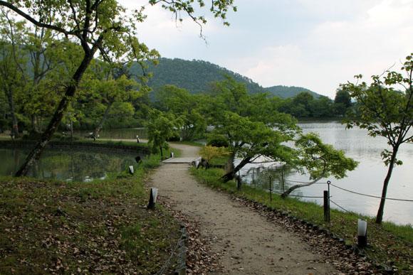 大沢の池 散策_e0048413_20164224.jpg