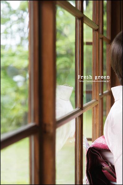 新緑の候_f0100215_001636.jpg