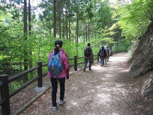 森林セラピー_b0157216_22183131.jpg