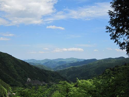 森林セラピー_b0157216_2224297.jpg