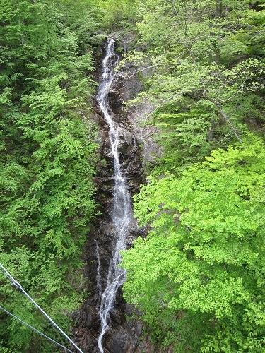 森林セラピー_b0157216_22294525.jpg