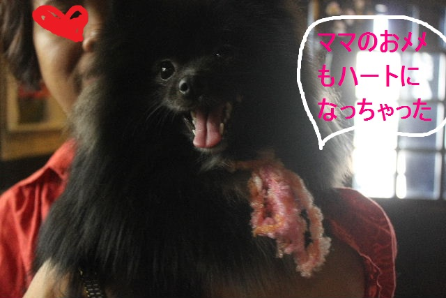 紹介しまぁ~す!!_b0130018_2365171.jpg