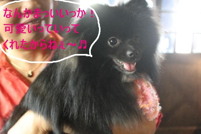 紹介しまぁ~す!!_b0130018_2365860.jpg