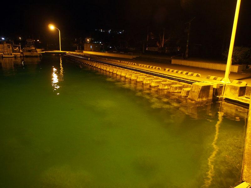 夜の漁港_e0189021_22112.jpg