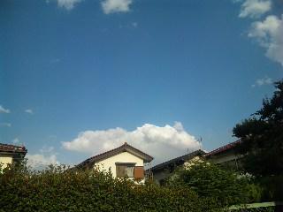 blog:夏日に似合うカクテル_a0103940_17581981.jpg