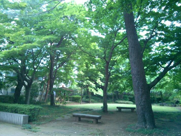 薫風  山本有三記念館にて_e0173350_746082.jpg