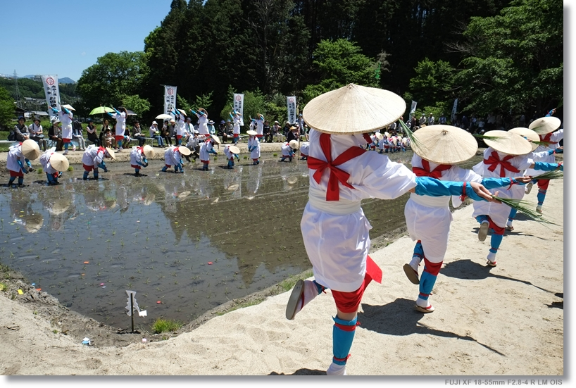 お田植え祭り_c0054876_16192072.jpg