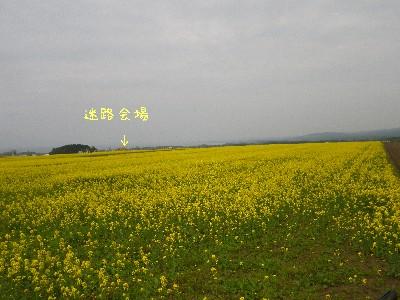 f0205887_1030551.jpg