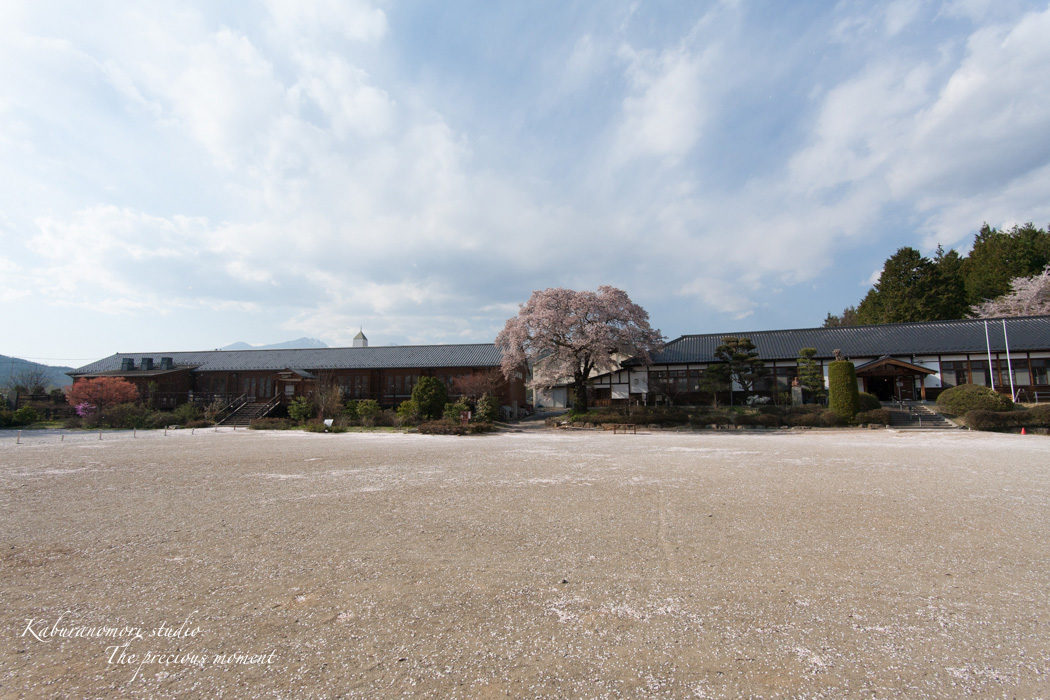 春の津金、海岸寺とその登り口の村にある旧津金学校_c0137403_16354992.jpg