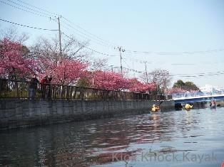 東京運河 2014_f0164003_1729823.jpg