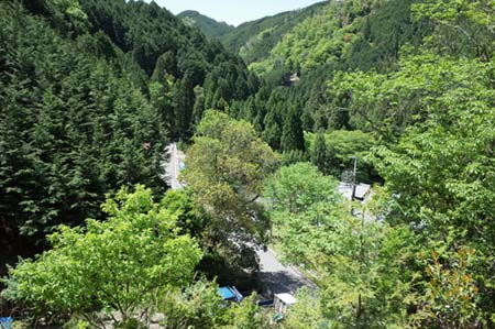 【報告】5月17日(土)松山の整備とちょこっと植林(前半)_e0032609_01095040.jpg