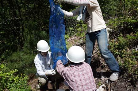 【報告】5月17日(土)松山の整備とちょこっと植林(前半)_e0032609_01231155.jpg