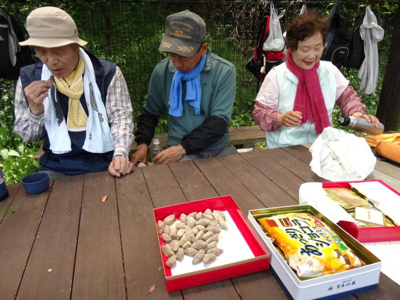 淡輪小学校1年生にお土産にあげたドングリが苗木になって帰ってきました     by     (TATE-misaki)_c0108460_21164471.jpg