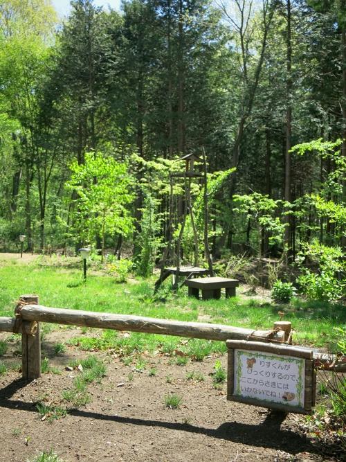 森のカフェ『 L\'PIC』ル・ピック ❤ モーニングプレート♪<閉店>_f0236260_22135955.jpg