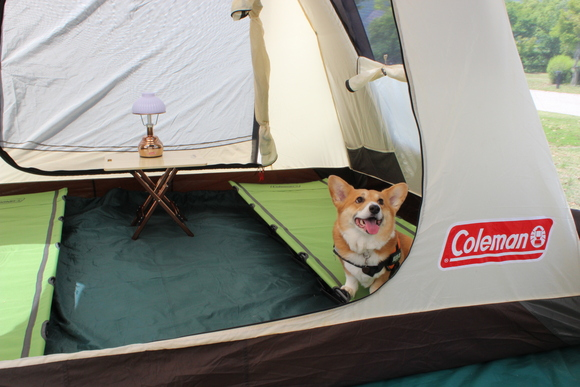 キャンプ歴_f0296165_1450842.jpg