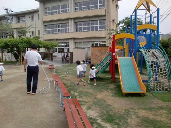 明倫幼稚園しばふプロジェクト 小林_e0149215_16343996.jpg