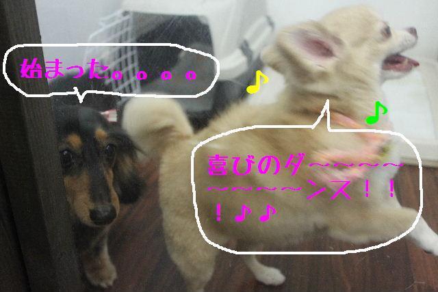 b0130018_1345436.jpg