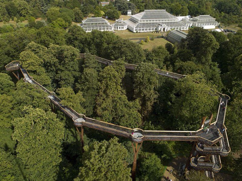 Tree top walkway_c0128818_17341212.jpg