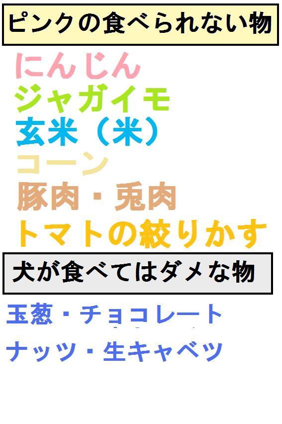 b0181457_1353936.jpg