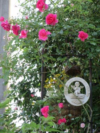 小さな庭のバラが見ごろになりました~_a0243064_0411188.jpg