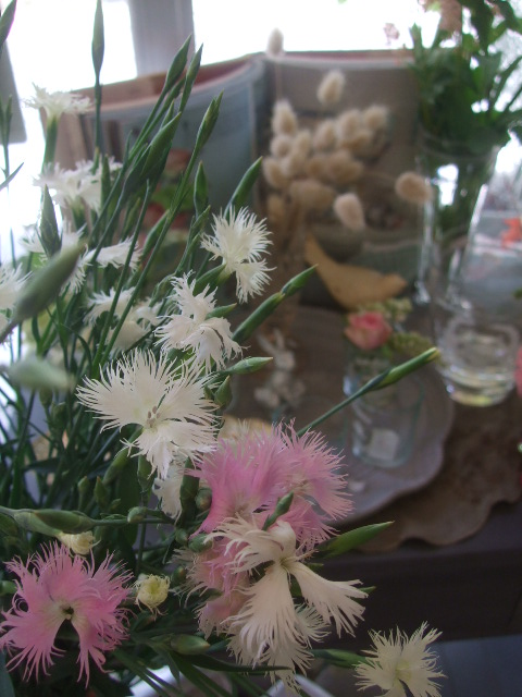 オークリーフ(5月の花たち)_f0049672_1803767.jpg