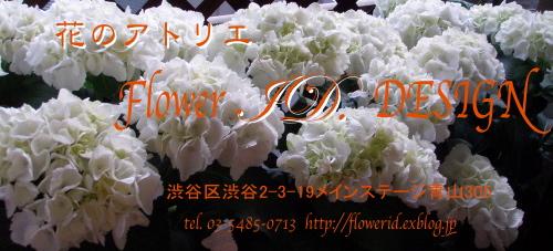 f0007380_2072557.jpg