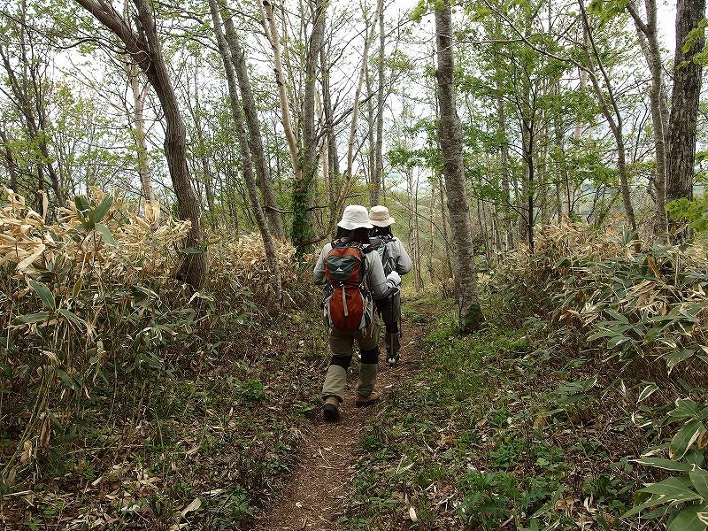 伊達紋別岳で「楽しい山登りのホームページ」のJAJAさんに_f0138096_23244437.jpg