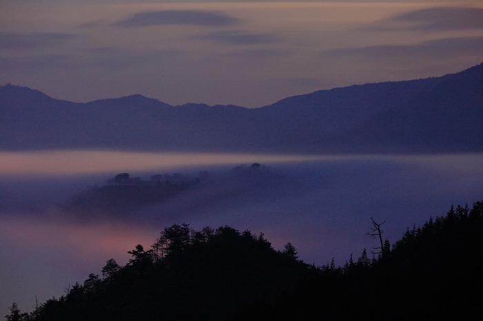 霧の中_a0294534_18591155.jpg