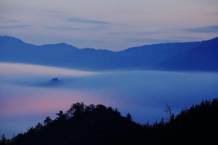 霧の中_a0294534_18595911.jpg
